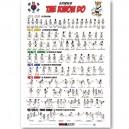 Poster 70x100 TAEKWONDO